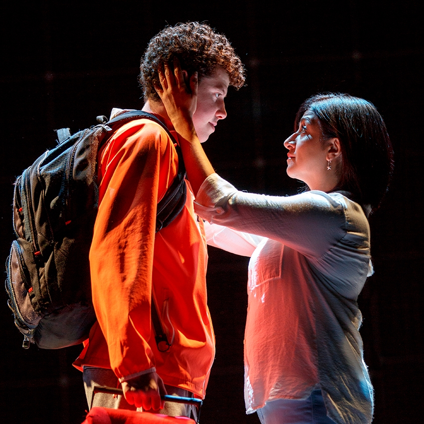 Curious Incident Of The Dog In The Nighttime National Tour