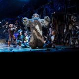 Cats National Tour